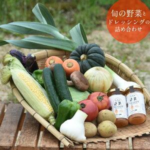 【ふるさと納税】旬の野菜とドレッシングの詰め合わせセット