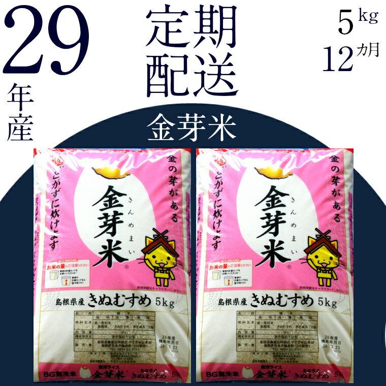 【ふるさと納税】 BG無洗米 金芽米 [定期] きぬむすめ  5kg/12ヵ月 米 無洗米 定期 島根県