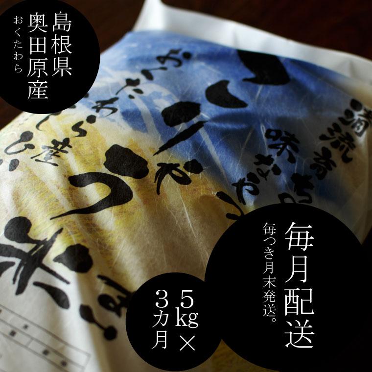 【ふるさと納税】 米 こりゃう米(まい)5kg×3ヵ月定期便