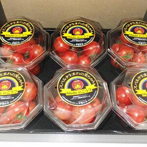【ふるさと納税】スパルタ生まれの笑ちゃんトマト ギフト用(200g×6パック入) 【野菜・トマト】 お届け:2019年11月上旬〜2020年6月下旬