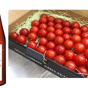 【ふるさと納税】スパルタ生まれの笑ちゃんトマトとトマトジュースセットA 【野菜・トマト・果実飲料・ジュース】 お届け:2019年11月上旬〜2020年6月下旬