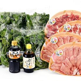 【ふるさと納税】江津クレソン鍋パーティーセット 【鍋セット・お肉・豚肉・野菜・鍋・お鍋】