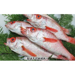 【ふるさと納税】鮮魚セットF【配送不可:離島】 【魚貝類・のどぐろ・魚・魚介類】 お届け:9月上旬〜5月下旬