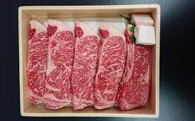 【ふるさと納税】熟豊和牛サーロインステーキ(1,000g) 【牛肉/ステーキ・200g×5枚】※クレジット限定