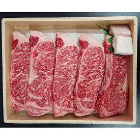 【ふるさと納税】熟豊和牛サーロインステーキ(1,000g) 【牛肉/ステーキ】
