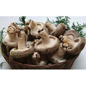 【ふるさと納税】菌床しいたけ かご入り 【野菜・きのこ】