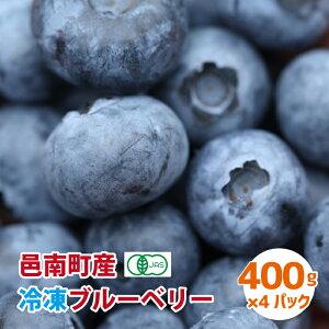 【ふるさと納税】有機 冷凍ブルーベリー1.6kg(400g×4パック)