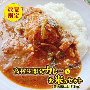 【ふるさと納税】数量限定 高校生開発カレーとお米(無洗米仕上げ、3キロ)のセット