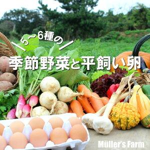 【ふるさと納税】季節の野菜詰め合わせ(5〜6種)と平飼い卵セット!農薬不使用だから安心安全!