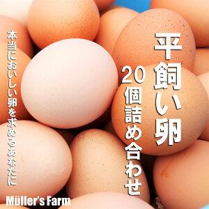 【ふるさと納税】平飼い卵詰め合わせ!20個セット