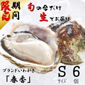 【ふるさと納税】生の岩牡蠣「春香」 Sサイズ6個 ※期間限定5月23日まで