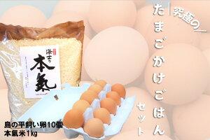 【ふるさと納税】平飼い卵の卵かけご飯セット(平飼い卵10個・本氣米1kg)