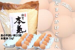 【ふるさと納税】平飼い卵の卵かけご飯セット(平飼い卵20個・本氣米5kg)