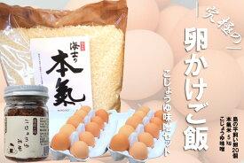 【ふるさと納税】島の本氣の卵かけご飯をご賞味あれ!平飼い卵と島の伝統こじょうゆ味噌の卵かけご飯セット(平飼い卵20個・本氣米5kg・こじょうゆ味噌110g)