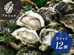 【ふるさと納税】海士町産 ブランド 岩牡蠣 いわがき 春香 フルシェル S 12個 生食 牡蠣 冷凍 小分け