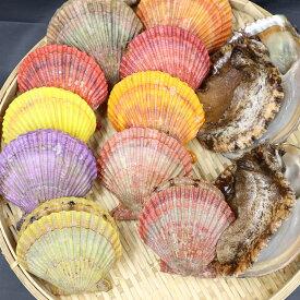 【ふるさと納税】【先行予約】天然 活 アワビ ヒオウギ貝 貝 セット<1月配送開始>