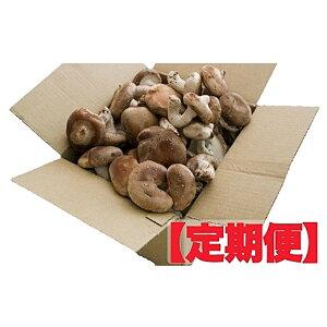 【ふるさと納税】生しいたけ定期便 1kg×4ヶ月 【定期便・きのこ・野菜・野菜セット】