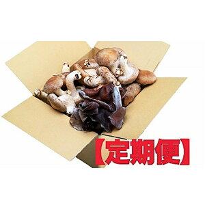 【ふるさと納税】生椎茸800g & 生きくらげ200g 定期便4ヶ月 【定期便・きのこ・野菜・野菜セット】