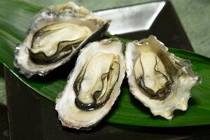 【ふるさと納税】A-57 殻付き牡蠣