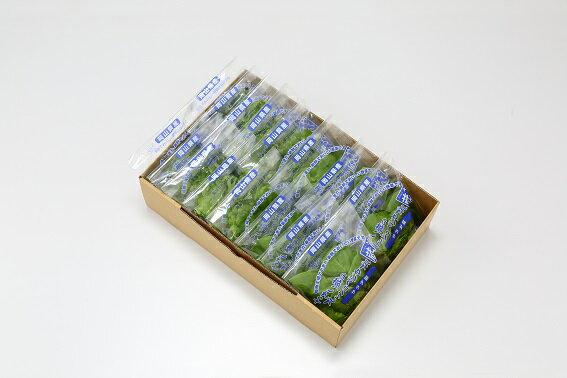 【ふるさと納税】1-34 植物工場産野菜・御徳用Bセット