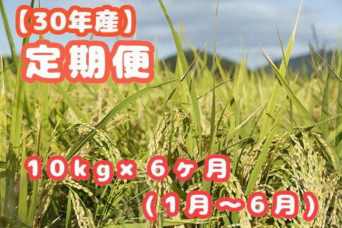【ふるさと納税】【R30-6M-1】30年産「笠岡ふるさと米」10kg×6ヶ月コース(1月から6月発送)