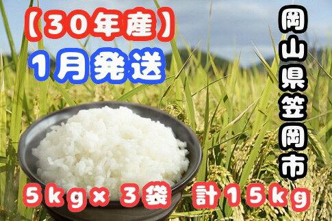 【ふるさと納税】R30-01 30年産「笠岡ふるさと米」15kg(1月発送)