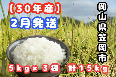 【ふるさと納税】R30-02 30年産「笠岡ふるさと米」15kg(2月発送)