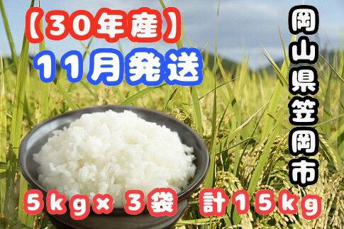 【ふるさと納税】【R30-11】30年産新米「笠岡ふるさと米」15kg(11月発送)