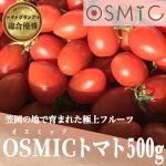 【ふるさと納税】オスミックトマト