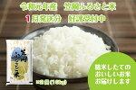 R1-012019年産「笠岡ふるさと米」10kg(1月発送)