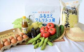 【ふるさと納税】A-54 ふるさとフレッシュ便(旬野菜・ふるさと米)