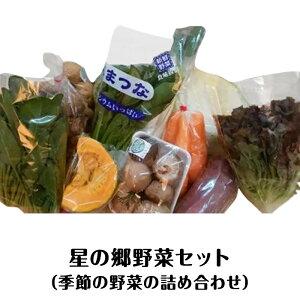 【ふるさと納税】A-37 星の郷野菜セット