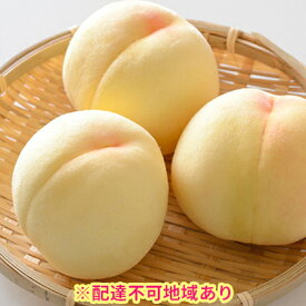 【ふるさと納税】【年末早期受付】岡山県産 白桃ロイヤル 1.5kg箱 6玉入り 【果物・もも・桃・フルーツ・果物類】 お届け:2020年7月中旬〜2020年8月上旬