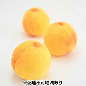 【ふるさと納税】●先行予約受付●ご家庭用 おかやまの黄金桃 3玉(大玉) 【果物・もも・桃・フルーツ・果物類】 お届け:2020年8月下旬〜2020年9月中旬