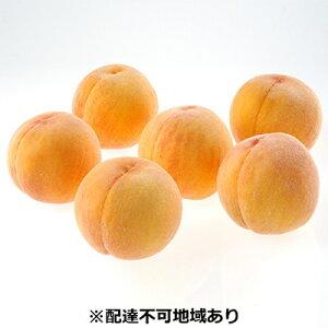【ふるさと納税】●先行予約受付●ご家庭用 おかやまの黄金桃 約1.5kg 【果物・もも・桃・フルーツ・果物類】 お届け:2020年8月下旬〜2020年9月中旬