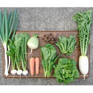 【ふるさと納税】ORGANIC FARM 風の谷 旬の自然栽培野菜 7〜9品目 【野菜・セット・詰合せ・野菜セット・自然栽培・9月のおすすめ】 お届け:2020年10月上旬〜 順次発送