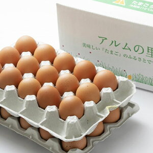 【ふるさと納税】赤玉ネッカリッチ卵 80個入り 【卵・鶏卵】