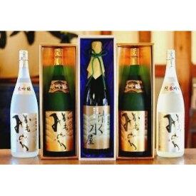 【ふるさと納税】「丸本酒造」厳選吟醸セット1800ml×5本 【日本酒・加工食品・飲料・ドリンク】
