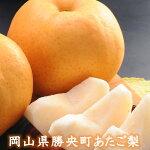【ふるさと納税】勝央町産梨「あたご梨」(4.0kg以上)