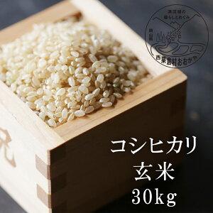【ふるさと納税】<G25おおがや米 コシヒカリ 玄米30kg>