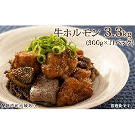 【ふるさと納税】牛 ホルモン 3.3kg(300g×11パック)【配達不可:離島】 【牛肉/ホルモン・お肉・牛肉・焼肉・バーベキュー】