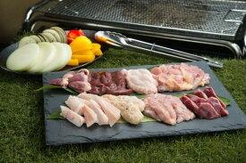 【ふるさと納税】鮮度抜群でレア部位も含む6種入り、鶏肉専門店の「焼肉BBQセット(みはら神明鶏)」