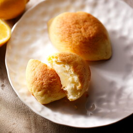 【ふるさと納税】八天堂 プレミアムフローズンくりーむパン&ひろしま檸檬パン