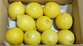 【ふるさと納税】レモン 皮まで美味しい瀬戸田無農薬レモン 3kg(21〜33個)