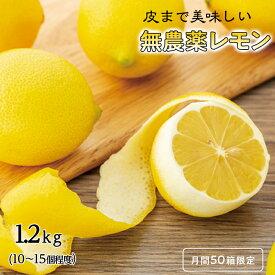 【ふるさと納税】月間50箱限定 瀬戸田産 皮まで美味しい 無農薬 レモン 1.2kg 広島 尾道 無農薬 国産 レモン