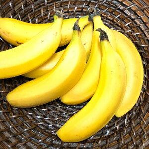 【ふるさと納税】ヒロシマPEACEバナナ 3〜5本(1本100〜150g) 【果物詰合せ・フルーツ・果物・詰合せ・セット・果物類】