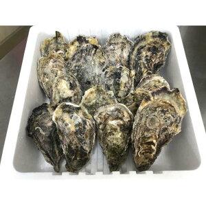 【ふるさと納税】【加熱用】宮島が育んだ冷凍かき(殻付き)15個