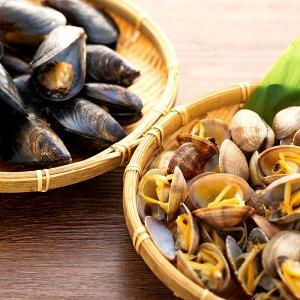 【ふるさと納税】宮島ムール貝と大野産アサリ大粒セット