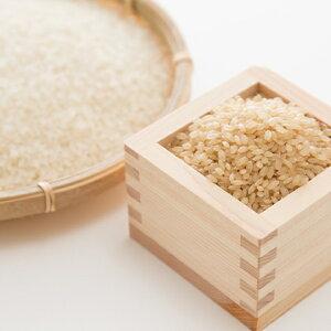 【ふるさと納税】安芸高田市産コシヒカリ『玄米』8kg 【お米・コシヒカリ】