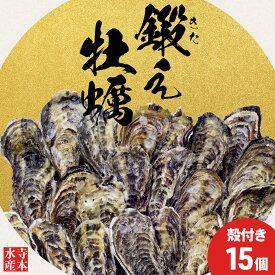 【ふるさと納税】〈1月より発送〉広島県江田島市産 甘み際立つぷりっぷりの殻付き牡蠣15個【生食可】